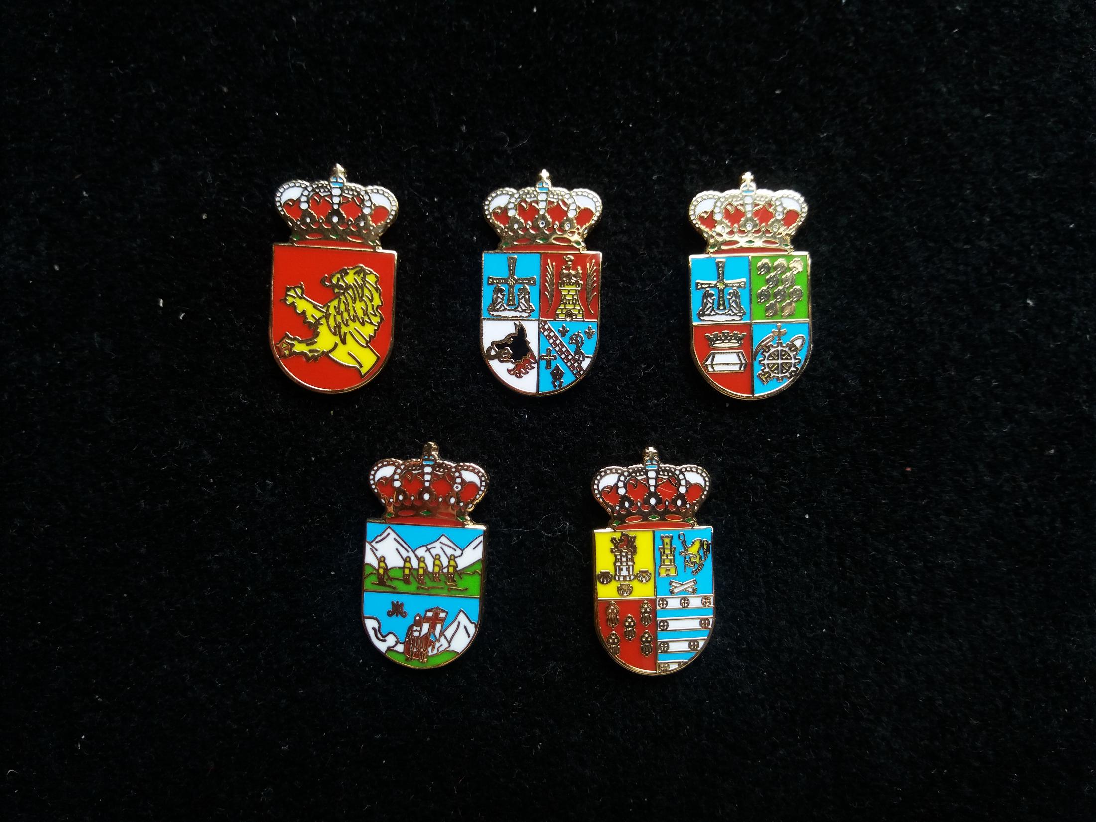 Valdés, San Tirso de Abres, San Martín del Rey Aurelio, Onís and Salas heraldic pins